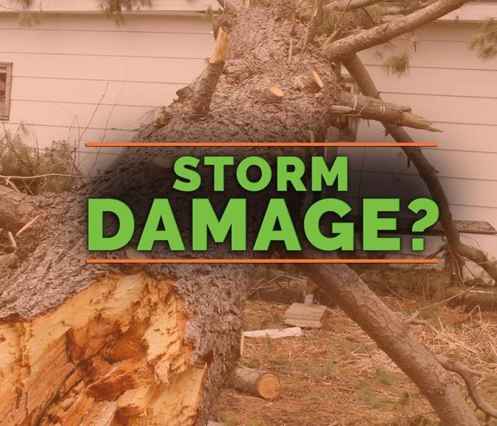 Storm Damage 3 Steps You Can Expect During Professional Storm Cleanup