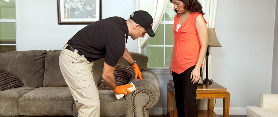 Oviedo, FL carpet upholstery cleaning
